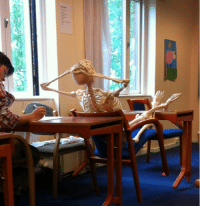 """Target, Teacher, and Tumblr: <p><a class=""""tumblr_blog"""" href=""""http://carcat.tumblr.com/post/51714000761/our-biology-teacher-brought-a-skeleton-to-class"""" target=""""_blank"""">carcat</a>:</p> <blockquote> <p>our biology teacher brought a skeleton to class yesterday and now everyone's treating it as if it's a part if our class i'm going to</p> </blockquote>"""