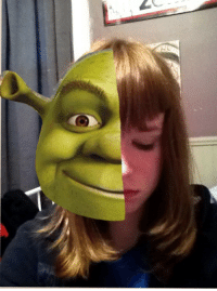 "Makeup, Shrek, and Target: <p><a class=""tumblr_blog"" href=""http://slenclerman.tumblr.com/post/51718449943"" target=""_blank"">slenclerman</a>:</p> <blockquote> <p><a class=""tumblr_blog"" href=""http://notreallyrequired.tumblr.com/post/51718406784/slenclerman-so-this-photo-has-a-lot-of-meaning"" target=""_blank"">notreallyrequired</a>:</p> <blockquote> <p><a class=""tumblr_blog"" href=""http://slenclerman.tumblr.com/post/51517996170"" target=""_blank"">slenclerman</a>:</p> <blockquote> <p>so this photo has a lot of meaning for me. the girl on the right is me. how i appear to be. the girl on the left is who i really am, behind the makeup, behind the lies. i put on such a show for people, but deep down i really care. this is the rea l me</p> </blockquote> <p>I'm pretty sure that's Shrek on the left</p> </blockquote> <p>does it feel good when you say that</p> </blockquote>"