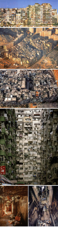 "Crime, Drugs, and Police: <p><a href=""http://integralreality.tumblr.com/post/10345385498"">integralreality</a>:</p> <blockquote> <p><strong>Kowloon Walled City</strong></p> <p>Kowloon Walled City was a densely populated, largely ungoverned settlement in Kowloon, Hong Kong. Originally a Chinese military fort, the Walled City became an enclave after the New Territories were leased to Britain in 1898.<br/><br/>Its population increased dramatically following the Japanese occupation of Hong Kong during World War II. From the 1950s to the 1970s, it was controlled by Triads and had high rates of prostitution, gambling, and drug use. In 1987, the Walled City contained <strong>33,000 residents within its 6.5-acre (0.03 km2; 0.01 sq mi) borders.</strong></p> <p><span>Beginning in the 1950s, Triad groups such as the 14K and Sun Yee On gained a stranglehold on the Walled City's countless brothels, gambling parlors, and opium dens. The Walled City had become such a haven for criminals that police would venture into it only in large groups. It was not until 1973–74, when a series of more than 3,500 police raids resulted in over 2,500 arrests and over 4,000 pounds of seized drugs, that the Triads' power began to wane. With public support, particularly from younger residents, the continued raids gradually eroded drug use and violent crime. In 1983, the police commander of the Kowloon City District declared the Walled City's crime rate to be under control.<br/><br/>The City also underwent massive construction during the 1960s and 1970s. Eight municipal pipes provided water to the entire structure (although more could have come from wells). A few of the streets were illuminated by fluorescent lights, as sunlight rarely reached the lower levels. Although the rampant crime of earlier decades diminished in later years, the Walled City was still known for its high number of unlicensed doctors and dentists, who could operate there without threat of prosecution.</span></p> <p><span>In January 1987, the Hong Kong government announced plans to demolish the Walled City. After an arduous eviction process, demolition began in March 1993 and was completed in April 1994. Kowloon Walled City Park opened in December 1995 and occupies the area of the former Walled City.</span></p> </blockquote>"
