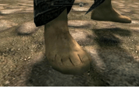 """Shoes, Skyrim, and Tumblr: <p><a href=""""http://leafcrunch.tumblr.com/post/173101712184/gaygothur-reminder-that-the-foot-models-in"""" class=""""tumblr_blog"""">leafcrunch</a>:</p> <blockquote> <p><a href=""""http://gaygothur.tumblr.com/post/173082761827/reminder-that-the-foot-models-in-skyrim-are"""" class=""""tumblr_blog"""">gaygothur</a>:</p> <blockquote><p>Reminder that the foot models in Skyrim are literally just shoes with a foot texture slapped over it</p></blockquote> <figure class=""""tmblr-full"""" data-orig-height=""""768"""" data-orig-width=""""1024""""><img src=""""https://78.media.tumblr.com/2fcd5464324f9aa6ac25175417bb947e/tumblr_inline_p7g3p8o5bz1sj3e5t_540.jpg"""" data-orig-height=""""768"""" data-orig-width=""""1024""""/></figure></blockquote>"""