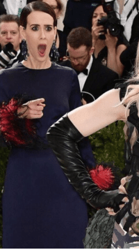 "Madonna, Meme, and Tumblr: <p><a href=""http://memehumor.net/post/160241160023/sarah-paulson-flipped-out-over-meeting-madonna-at"" class=""tumblr_blog"">memehumor</a>:</p>  <blockquote><p>Sarah Paulson flipped out over meeting Madonna at the Met Gala. She's a meme now.</p></blockquote>"