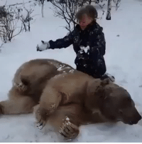 """Hello, Tumblr, and Bear: <p><a href=""""http://satedghost.tumblr.com/post/153847327415/numinous-queer-thelesseroftwo-is-russia-even"""" class=""""tumblr_blog"""">satedghost</a>:</p><blockquote> <p><a href=""""http://numinous-queer.tumblr.com/post/153839136209/thelesseroftwo-is-russia-even-real-i-think-it"""" class=""""tumblr_blog"""">numinous-queer</a>:</p> <blockquote> <p><a class=""""tumblr_blog"""" href=""""http://thelesseroftwo.tumblr.com/post/153284187606"""">thelesseroftwo</a>:</p> <blockquote> <p>Is Russia even real</p> </blockquote> <p>I think it is necessary for me to transcribe what she's saying because it is EXACTLY how I babytalk to my cat:</p> <p>""""Oh Stepa! So little – little Stepa! My little kiss, where's my little kiss?? Where are my little fingers? Where are my little legs? Where are my little paws? Stepa!"""" *shakes his paw* """"Say hello! Hello my little one! Hello!"""" *lies down on him* """"Oh how nice, how warm. Good boy…""""</p> </blockquote> <p>to be clear, this bear is named the russian equivalent of""""steve""""</p> </blockquote>"""