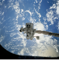 "<p><a href=""http://space-pics.tumblr.com/post/176074695942/astronaut-james-s-voss-payload-commander-during"" class=""tumblr_blog"">space-pics</a>:</p>  <blockquote><p>Astronaut James S. Voss, payload commander, during the September 16, 1995, EVA which was conducted in and around Space Shuttle Endeavour's cargo bay. [4096 x 4096]</p></blockquote>: <p><a href=""http://space-pics.tumblr.com/post/176074695942/astronaut-james-s-voss-payload-commander-during"" class=""tumblr_blog"">space-pics</a>:</p>  <blockquote><p>Astronaut James S. Voss, payload commander, during the September 16, 1995, EVA which was conducted in and around Space Shuttle Endeavour's cargo bay. [4096 x 4096]</p></blockquote>"