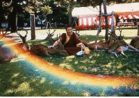 """Deer, Tumblr, and Blog: <p><a href=""""http://thelonelyrogue.tumblr.com/post/82763518317/thesylverlining-unexplained-events-a-tibetan"""" class=""""tumblr_blog"""">thelonelyrogue</a>:</p> <blockquote> <p><a class=""""tumblr_blog"""" href=""""http://thesylverlining.tumblr.com/post/82031133847/unexplained-events-a-tibetan-monk-blesses-the"""">thesylverlining</a>:</p> <blockquote> <p><a class=""""tumblr_blog"""" href=""""http://unexplained-events.com/post/80485802285/a-tibetan-monk-blesses-the-deer-that-gather-around"""">unexplained-events</a>:</p> <blockquote> <p>A Tibetan Monk blesses the deer that gather around him and someone snaps a picture. Upon viewing the picture they notice a rainbow had appeared.</p> </blockquote> <p>pretty sure this is the happiest picture I've seen in a long time</p> </blockquote> <p>magic is real</p> </blockquote>"""