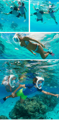 "<p><a href=""https://awesomage.tumblr.com/post/174444925745/scuba-diving-mask-hot-summer-fever20-off"" class=""tumblr_blog"">awesomage</a>:</p><blockquote> <p><b><a href=""https://shoppinggeek-store.com/collections/water-sports-gear/products/scuba-diving-mask-scuba-full-face-snorkeling-mask-underwater-anti-fog-snorkeling-mask-for-swimming-spearfishing-scuba-diving"">  Scuba Diving Mask   </a></b><br/></p> <p style="""">  Hot Summer FEVER….20% OFF Promo Deal<br/>NEW DESIGN 2018 Full Face Diving Mask <br/>Compatible Mount with GoPro and all types of action cameras<br/>Hurry Up and pick your mask before the Offer Ends…<br/>Free Shipping for USA, Canada, United Kingdom, Germany &amp; Australia  <br/></p> </blockquote>: <p><a href=""https://awesomage.tumblr.com/post/174444925745/scuba-diving-mask-hot-summer-fever20-off"" class=""tumblr_blog"">awesomage</a>:</p><blockquote> <p><b><a href=""https://shoppinggeek-store.com/collections/water-sports-gear/products/scuba-diving-mask-scuba-full-face-snorkeling-mask-underwater-anti-fog-snorkeling-mask-for-swimming-spearfishing-scuba-diving"">  Scuba Diving Mask   </a></b><br/></p> <p style="""">  Hot Summer FEVER….20% OFF Promo Deal<br/>NEW DESIGN 2018 Full Face Diving Mask <br/>Compatible Mount with GoPro and all types of action cameras<br/>Hurry Up and pick your mask before the Offer Ends…<br/>Free Shipping for USA, Canada, United Kingdom, Germany &amp; Australia  <br/></p> </blockquote>"