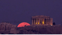 "<p><a href=""https://demigodgooglesearches.tumblr.com/post/170434513967/lastjedie-super-blue-blood-moon-rises-behind"" class=""tumblr_blog"">demigodgooglesearches</a>:</p> <blockquote> <p><a href=""http://lastjedie.tumblr.com/post/170360601917/super-blue-blood-moon-rises-behind-parthenon-in"" class=""tumblr_blog"">lastjedie</a>:</p> <blockquote><p>Super blue blood moon rises behind Parthenon, in Athens January 2018</p></blockquote>  <p><i>how the fuck did the ancients react to this without thinking the gods were pissed</i></p> </blockquote> <p>oh this just means artemis wants you to kill a rapist</p>: <p><a href=""https://demigodgooglesearches.tumblr.com/post/170434513967/lastjedie-super-blue-blood-moon-rises-behind"" class=""tumblr_blog"">demigodgooglesearches</a>:</p> <blockquote> <p><a href=""http://lastjedie.tumblr.com/post/170360601917/super-blue-blood-moon-rises-behind-parthenon-in"" class=""tumblr_blog"">lastjedie</a>:</p> <blockquote><p>Super blue blood moon rises behind Parthenon, in Athens January 2018</p></blockquote>  <p><i>how the fuck did the ancients react to this without thinking the gods were pissed</i></p> </blockquote> <p>oh this just means artemis wants you to kill a rapist</p>"
