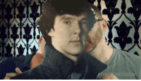 "Tumblr, Blog, and Sherlock: <p><a href=""https://gracefulporcupine.tumblr.com/post/175719644893/stardom-you-know-benedict-cumberbatch-is-the-face"" class=""tumblr_blog"">gracefulporcupine</a>:</p>  <blockquote><p><a href=""https://stardom.tumblr.com/post/175715095718/you-know-benedict-cumberbatch-is-the-face-of"" class=""tumblr_blog"">stardom</a>:</p><blockquote><p>You know Benedict Cumberbatch is the face of Sherlock, but have you ever wondered who writes his lines? You can thank Mark Gatiss and Steven Moffat for that.</p></blockquote>  <p>Why am I seeing this on the year of our lord 2018</p></blockquote>"