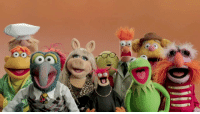 """Beautiful, The Muppets, and Tumblr: <p><a href=""""https://libertarirynn.tumblr.com/post/104893441714/clickholeofficial-beautiful-heres-what-the"""" class=""""tumblr_blog"""">libertarirynn</a>:</p>  <blockquote><p><a href=""""http://clickholeofficial.tumblr.com/post/104854169932/beautiful-heres-what-the-muppets-would-look-like"""" class=""""tumblr_blog"""">clickholeofficial</a>:</p>  <blockquote><div class=""""meta""""></div> <h1 class=""""headline""""><a href=""""http://www.clickhole.com/splitpic/beautiful-heres-what-muppets-would-look-women-colo-1577"""">Beautiful! Here's What The Muppets Would Look Like As Women Of Color</a></h1></blockquote>  <p>WHY CAN I NOT STOP LAUGHING?</p></blockquote>"""