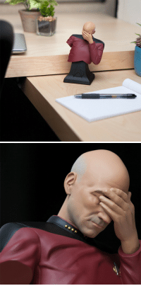 "Facepalm, Tumblr, and Blog: <p><a href=""https://novelty-gift-ideas.tumblr.com/post/173683563238/captain-picard-facepalm-bust"" class=""tumblr_blog"">novelty-gift-ideas</a>:</p><blockquote><p><b><a href=""https://awesomage.com/captain-picard-facepalm-bust/"">  Captain Picard Facepalm Bust   </a></b><br/></p></blockquote>"