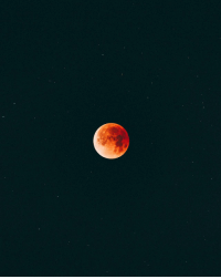 "<p><a href=""https://photos-of-space.tumblr.com/post/170379340338/super-blue-blood-moon-in-california-2200x2750"" class=""tumblr_blog"">photos-of-space</a>:</p>  <blockquote><p>Super Blue Blood Moon in California [2200x2750] [OC]</p></blockquote>: <p><a href=""https://photos-of-space.tumblr.com/post/170379340338/super-blue-blood-moon-in-california-2200x2750"" class=""tumblr_blog"">photos-of-space</a>:</p>  <blockquote><p>Super Blue Blood Moon in California [2200x2750] [OC]</p></blockquote>"