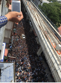"""Dank, Dicks, and Meme: <p>Actual Picture of Sunny Leone&rsquo;s (Pornstar) Visit To A Thirsty Part Of India, Rumours of Crowd Chanting &lsquo;Bob&rsquo; And Making Nazi Salutes With Their Dicks. via /r/dank_meme <a href=""""http://ift.tt/2ieahek"""">http://ift.tt/2ieahek</a></p>"""