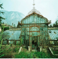 "<p>An Abandoned Greenhouse.<br/><a href=""http://daily-meme.tumblr.com""><span style=""color: #0000cd;""><a href=""http://daily-meme.tumblr.com/"">http://daily-meme.tumblr.com/</a></span></a></p>: <p>An Abandoned Greenhouse.<br/><a href=""http://daily-meme.tumblr.com""><span style=""color: #0000cd;""><a href=""http://daily-meme.tumblr.com/"">http://daily-meme.tumblr.com/</a></span></a></p>"