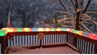 <p>Christmas lights after a snowstorm.</p>: <p>Christmas lights after a snowstorm.</p>