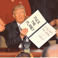 "<p>Donald Trump executive order gif memes are hot right now. BUY BUY BUY! via /r/MemeEconomy <a href=""http://ift.tt/2qUkyLD"">http://ift.tt/2qUkyLD</a></p>: <p>Donald Trump executive order gif memes are hot right now. BUY BUY BUY! via /r/MemeEconomy <a href=""http://ift.tt/2qUkyLD"">http://ift.tt/2qUkyLD</a></p>"