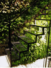 Greenhouse and Staircase: <p>Greenhouse Staircase.</p>
