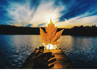 <p>Happy Autumn northern hemisphere.</p>: <p>Happy Autumn northern hemisphere.</p>