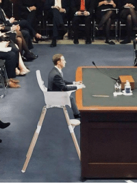<p>I love how The Zucc Trials were just, like *immediately* memed.</p>: <p>I love how The Zucc Trials were just, like *immediately* memed.</p>