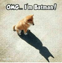 <p>I&rsquo;m the Batman</p>: <p>I&rsquo;m the Batman</p>