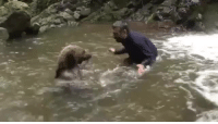 Bear, Russia, and Water: <p>Only in Russia.. a human having a water fight with a bear<br/></p>