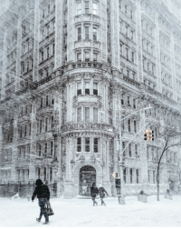 <p>The beauty of a snowstorm in New York City.</p>: <p>The beauty of a snowstorm in New York City.</p>