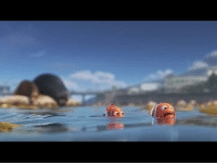 """Dank, Meme, and Finding Dory: <p>the FINDING DORY MOVIE but there is NO DORY AND AT 1000%SPEED BUT ENDING TRUCK SCENE IS NORMAL SPEED via /r/dank_meme <a href=""""http://ift.tt/2laIIPg"""">http://ift.tt/2laIIPg</a></p>"""