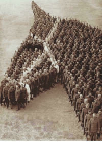 <p>US soldiers pay tribute to the 8 million horses, donkeys and mules lost during world war I, 1918</p>: <p>US soldiers pay tribute to the 8 million horses, donkeys and mules lost during world war I, 1918</p>