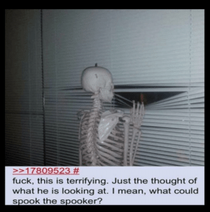 Spooked: >>17809523 #  fuck, this is terrifying. Just the thought of  what he is looking at. I mean, what could  spook the spooker? Spooked