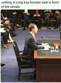 Dank Memes, Big Boy, and Boy: >sitting in a big boy booster seat in front  of the senate LMAAOOO