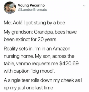 "Amazon, Mood, and Grandpa: ¥oung Pecorino  @LandonBromuto  Me: Ack! I got stung by a bee  My grandson: Grandpa, bees have  been extinct for 20 years  Reality sets in. I'm in an Amazon  nursing home. My son, across the  table, venmo requests me $420.69  with caption ""big mood""  A single tear rolls down my cheek as  rip my juul one last time"