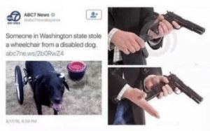 Abc7: ®  ABC7 News.  Someone in Washington state stole  a wheelchair from a disabled dog  abc7ne.ws/2bORwZ4  /211 9 20PM