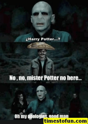 20 Extremely Funny Harry Potter Memes Casting Laughter Spell - Swish Today: ¿Harry Potter  ?  No, no, mister Potter no here..  On my apelogies.n  timestofun.com 20 Extremely Funny Harry Potter Memes Casting Laughter Spell - Swish Today