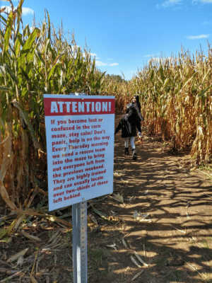 This corn maze sign: ΑΤΤEΝTIΟΝ!  If you become lost or  confused in the corn  maze,stay calm! Don't  panic,help is on the way.  Every Thursday morning  we send a rescue team  into the maze to bring  out everyone left from  the previous weekend.  They are  and can usually locate  highly trained  over two-thirds of those  left behind. This corn maze sign
