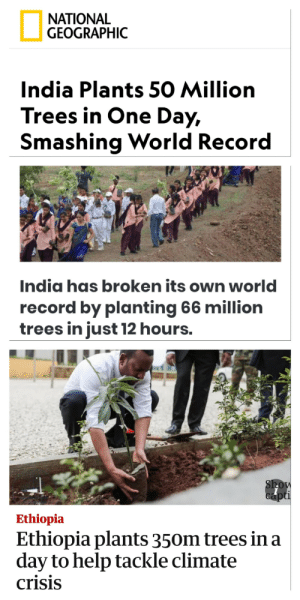 "Money, Help, and India: ΝATIONAL  GEOGRAPHIC  India Plants 50 Million  Trees in One Day,  Smashing World Record  India has broken its own world  record by planting 66 million  trees in just 12 hours.  Show  capti  Ethiopia  Ethiopia plants 350m trees in a  day to help tackle climate  crisis Greta: ""Ppl are dying! Gov't fix it!"" Mr Beast: ""Need money for trees!"". Rest of world: ""Parry this you filthy casual"" via /r/wholesomememes https://ift.tt/31NhQu8"