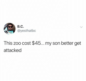 Zoo, Son, and This: В.С.  ayesthatbc  This zoo cost $45... my son better get  attacked