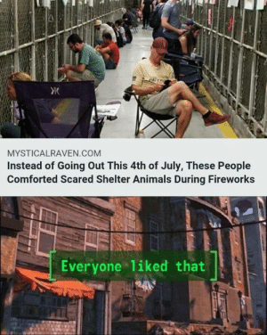 Animals, Friday, and Memes: Ж  MYSTICALRAVEN.COM  Instead of Going Out This 4th of July, These People  Comforted Scared Shelter Animals During Fireworks  Everyone liked that 40 Mega Memes for Your Friday #memes