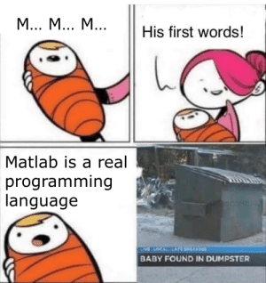 Zero, Programming, and Baby: М... М... М...  His first words!  Matlab is a real  programming  language  /DiscoStu42  VLOCKEATE EAP  BABY FOUND IN DUMPSTER Indexing starts at zero, dammit!