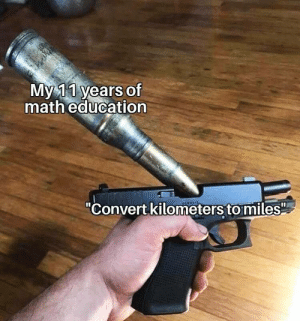 "More of the best memes at http://mountainmemes.tumblr.com: Мy11 years of  math education  ""Convert kilometers to miles More of the best memes at http://mountainmemes.tumblr.com"