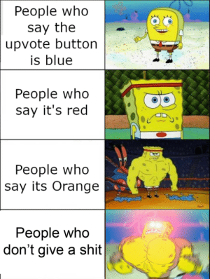 Not this bullshit again: Реople who  say the  upvote button  is blue  People who  say it's red  People who  say its Orange  People who  don't give a shit Not this bullshit again