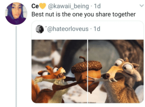 Sharing is caring by alfosn MORE MEMES: се. @kawaii-being , 1 d  Best nut is the one you share together  @hateorloveus 1d Sharing is caring by alfosn MORE MEMES