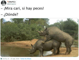 Iphone, Twitter, and Sept: ТеMaPiCo  @temapico  - iMira cari, si hay peces!  - Dónde?  12:25 p. m. 25 sept. 2019 Twitter for iPhone
