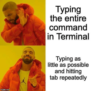 How do you type commands?: Тyping  the entire  command  in Terminal  Typing as  little as possible  and hitting  tab repeatedly  imgflip.com How do you type commands?