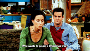 friendsgifs:  F•R•I•E•N•D•S, The One with All the Thanksgivings (S05E08): మ  Who wants to go get a Christmas tree? friendsgifs:  F•R•I•E•N•D•S, The One with All the Thanksgivings (S05E08)