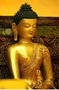 """""""Know well what leads you forward and what holds you back, and choose the path that leads to wisdom.""""  ~ The Buddha ~: """"Know well what leads you forward and what holds you back, and choose the path that leads to wisdom.""""  ~ The Buddha ~"""