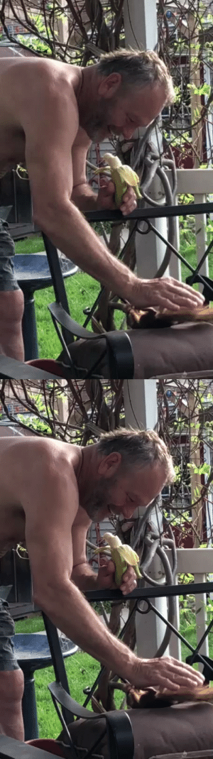 """My dad is retired now and helped with rehabilitating a squirrel he found. The squirrel comes back daily for snacks, pets, and fights.""(Source): ""My dad is retired now and helped with rehabilitating a squirrel he found. The squirrel comes back daily for snacks, pets, and fights.""(Source)"