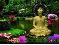 """""""My teaching is simple. Do what is right. Be Pure.""""  ~ The Buddha ~: """"My teaching is simple. Do what is right. Be Pure.""""  ~ The Buddha ~"""