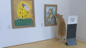 """Quarantine, day 14. Me and my boyfriend spent the whole day setting up an art gallery for our gerbil."" (Source): ""Quarantine, day 14. Me and my boyfriend spent the whole day setting up an art gallery for our gerbil."" (Source)"
