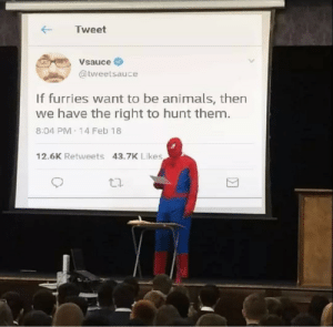 14 Feb: ← Tweet  ,Vsauce  @tweetsauce  If furries want to be animals, then  we have the right to hunt them.  8.04 PM 14 Feb 18  12.6K Retweets 43.7K Likes  団  乜.