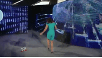 Bitch, Run, and World Wrestling Entertainment: /.. / / ノー/ Stephanie McMahon running in shame after being bitch slapped by Brie Bella
