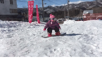 Memes, Old, and Jumped: レンタル  スス  si-スキーウHr  エア 16-Month Old Girl's First Time Snowboarding and Jumping 👏🏽👏🏽 By: @warapornhayashi