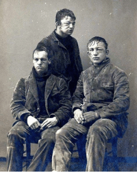 Memes, Precious, and Fight: 㬜 Princeton sophomores pose after a brutal snowball fight, 1893. Could our precious snowflakes handle this today?